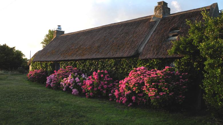 Ferienhaus mit Meerblick vom Haus und Grundstück